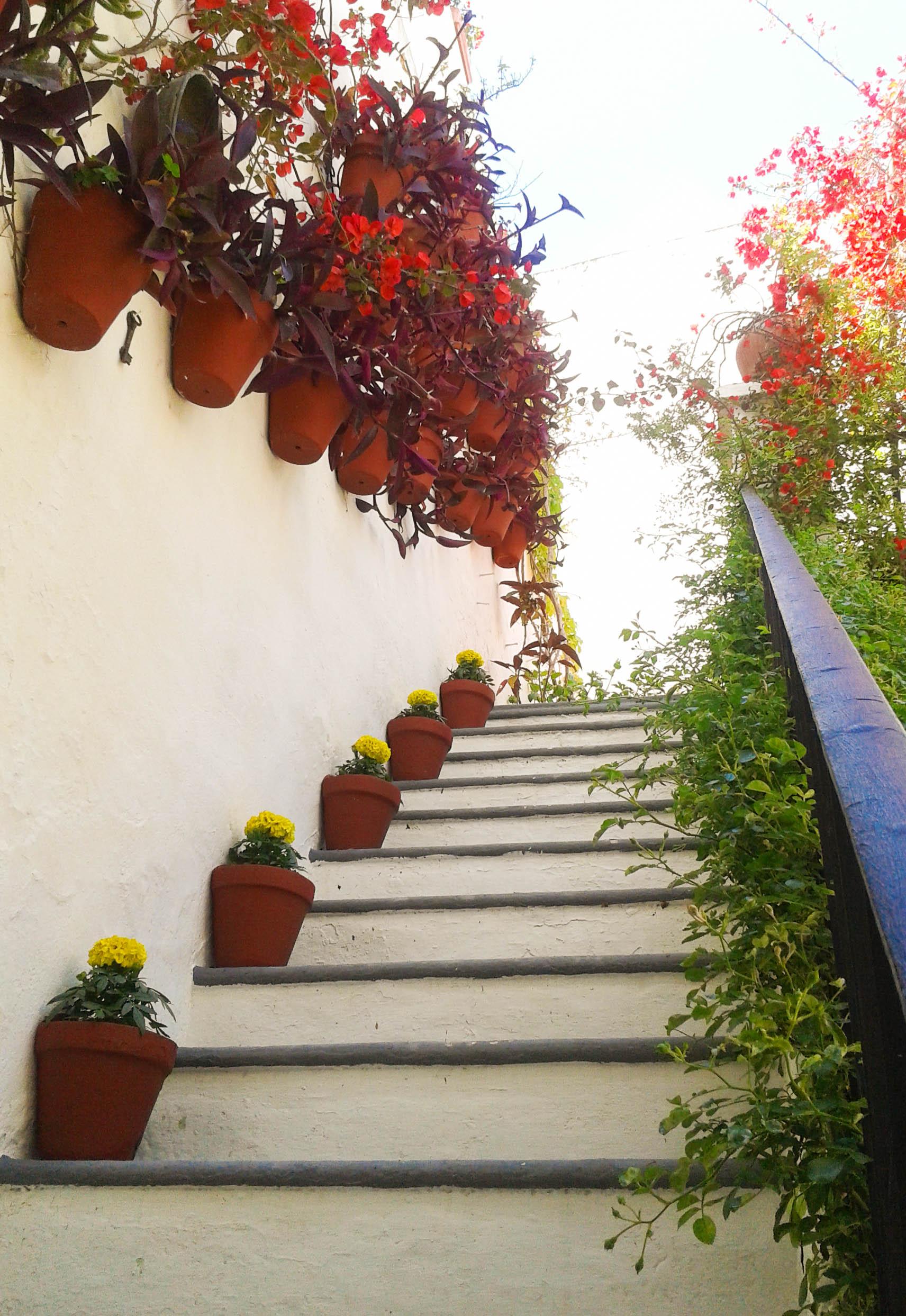escalera tipica patio cordobes
