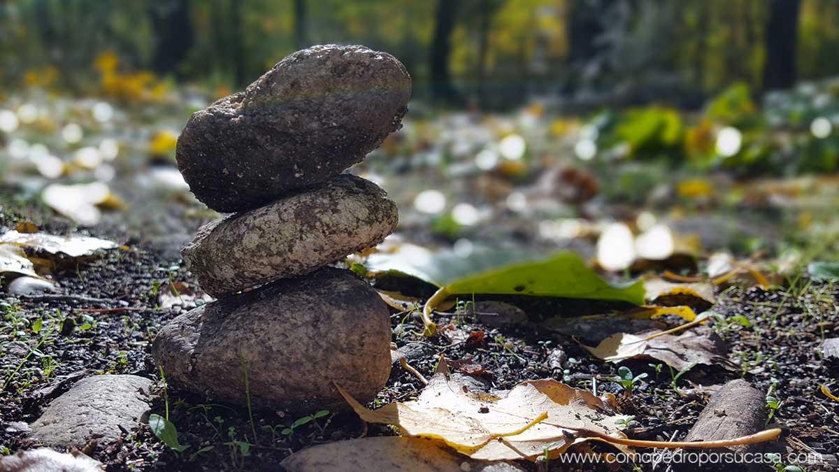 piedras-composicion-en-campo-otono